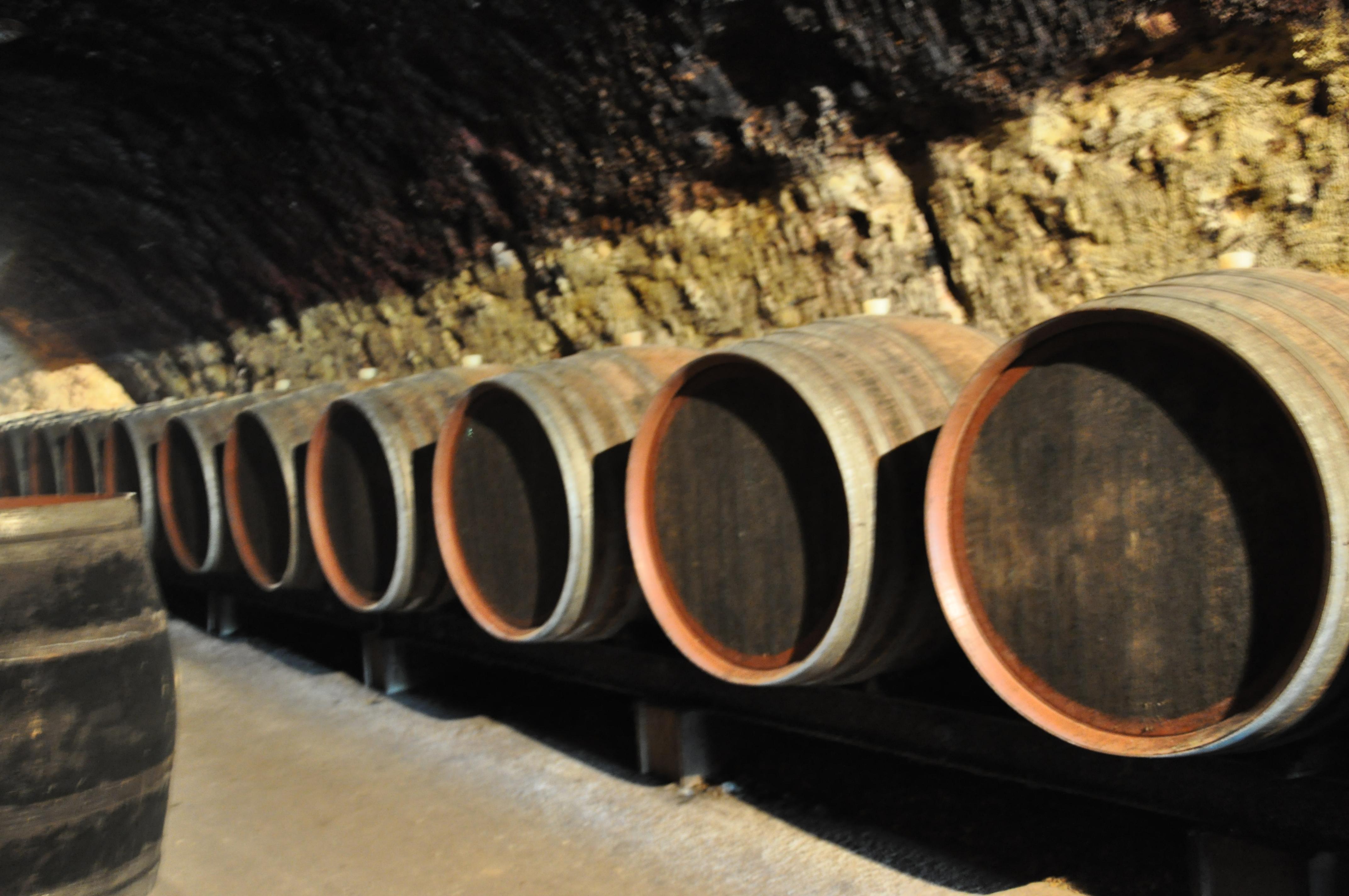 Jasnieres Wine – Sarthe